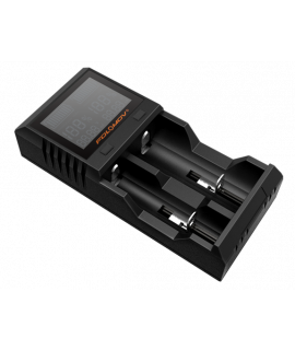 Folomov A2 battery charger